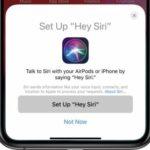 AirPods 2 будут оснащены функцией вызова помощника Siri