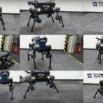 Роботизированная собака ANYmal после падения может вставать на ноги